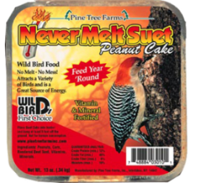 Pinetree Farms Pine Tree 1470 Insect Suet Cake 12 Ounce